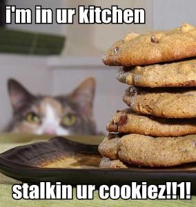 stalkin ur cookiez